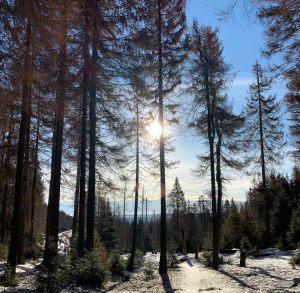 27_Winterwandern